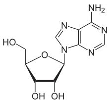File:Adenosine2.jpg