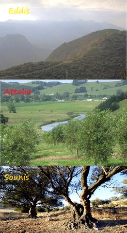 File:Eddis Attolia Sounis comparison.png