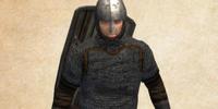 Mercenary Veteran Swordsman