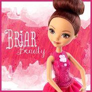 Facebook - Ballet Briar