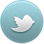Archivo:Twitter icon-active.png