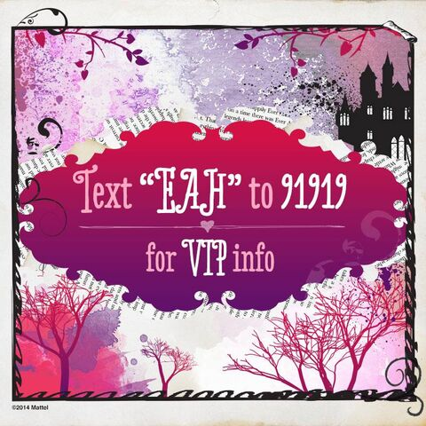 File:Facebook - VIP info.jpg
