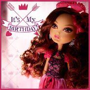 Facebook - Briar Birthday