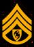 Clavic sergeant1
