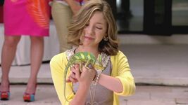 Sophie and the chameleon
