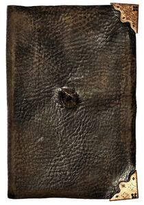 Tom Riddle's Diary