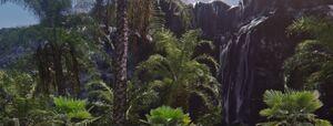 The Jungle Dimension