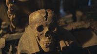 Linda's Skull