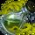 Ds item potion of death