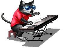 File:Stupidkeyboardcat.jpg