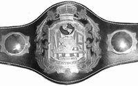 Heavyweightchampionship
