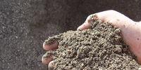 Dirt Gazing