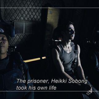 DVD subtitles showing