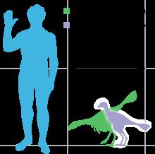 File:Caudipteryx - 2(Size).png