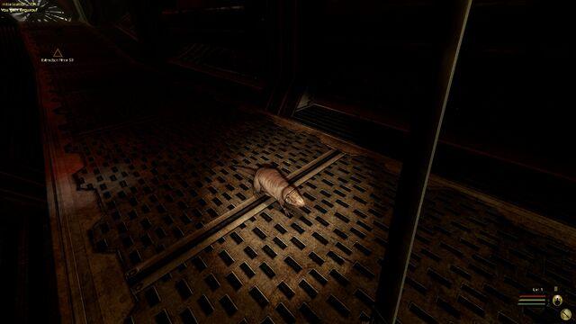 File:Red Eyed Sewer Rat.jpg
