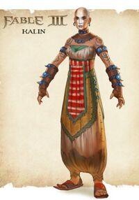 Kalin Concept