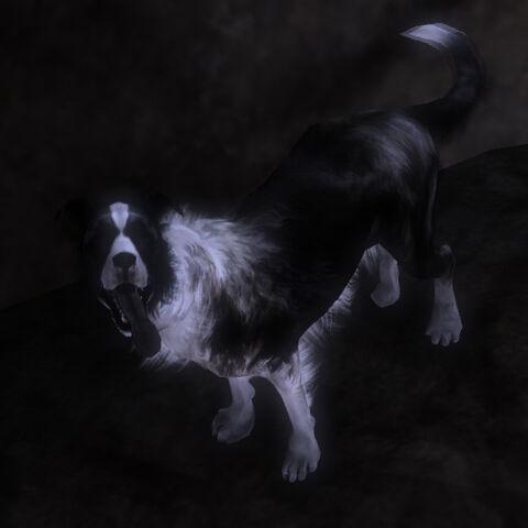 File:Fable3.dog.morph.evil.jpg