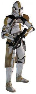 SIR Trooper