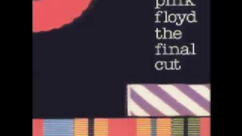 Pink Floyd Final Cut (13) - Two Suns In The Sunset