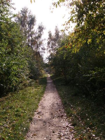 Datei:Berliner Mauerweg (parellel zur Braunfelsstraße).jpg