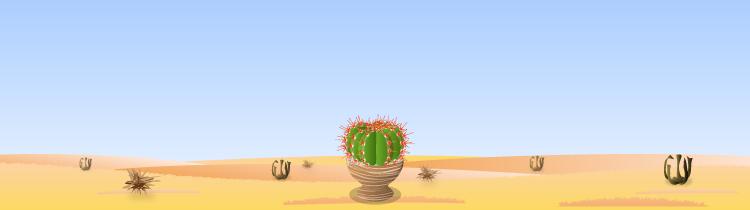 Bg desert