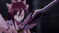 Erza's final duel