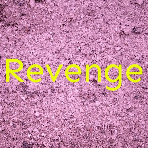 File:COVER - Revenge.jpg