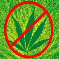 File:Cannabis crossed out.jpg