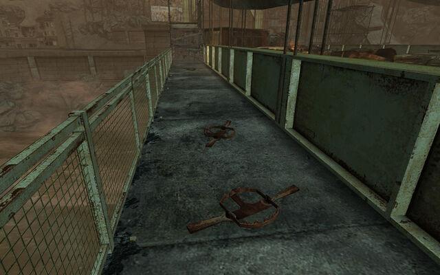 File:The Pitt Bridge bear traps.jpg