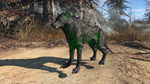Fo4FH glowing wolf