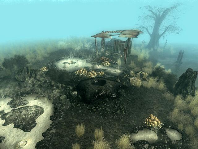 File:Excavated muck hole 1.jpg