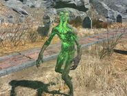 Fo4 glowing one