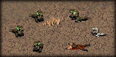 File:Geckos and dead trapper.jpg