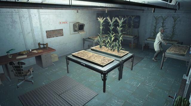 File:Vault81-Hydroponics-Fallout4.jpg