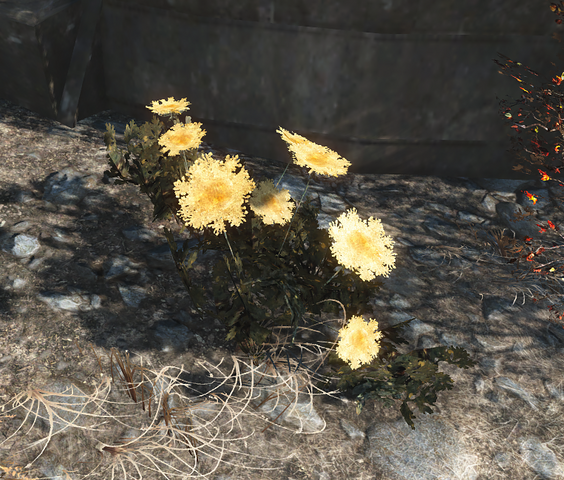 File:FO4 Mutated carrots.png