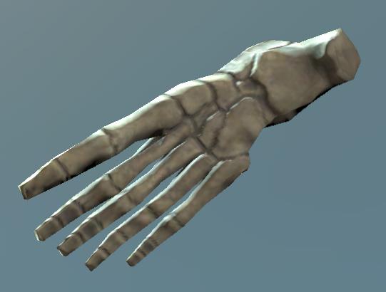 File:Right foot bones.png