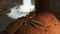 FO4 Old gullet sinkhole Fallen Hero