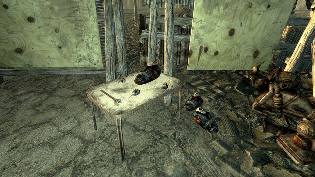 File:FO3 Flooded Metro Raider Camp4.jpg