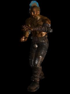 Raider Paingiver Armor
