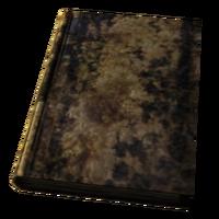Large Destroyed Book