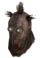 Raider Wastehound Helmet