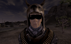 Bullethound