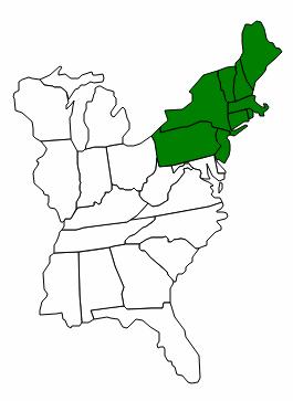 File:NEF states.png