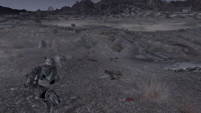 NCR Rangers tried to avenge after west scouting