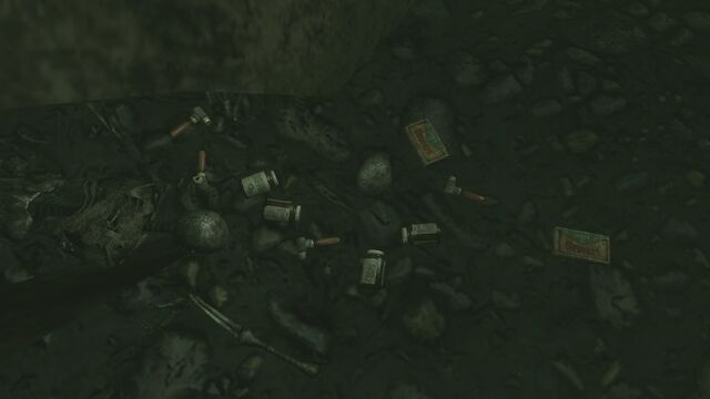 File:FO3PL Additional submerged treasure 4 loot.jpg