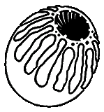 File:Icon deathclaw egg.png
