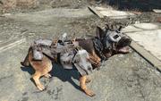 Fo4 dogs apparel