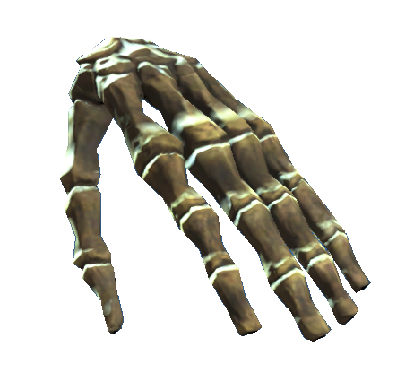 File:Left hand bones.png