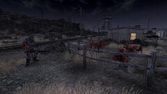 Midnight Ranch Attacks