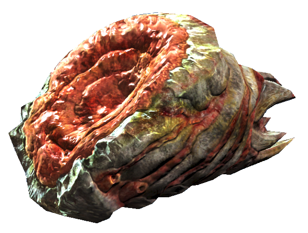 File:Bloatfly meat.png